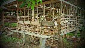 Azienda agricola della capra fotografie stock libere da diritti