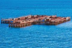 Azienda agricola della cozza nel mare Fotografie Stock