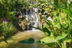 Azienda agricola della farfalla e di Bai Orchid fotografia stock