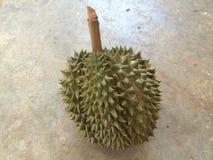 azienda agricola della frutta del durian Fotografie Stock