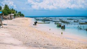 Azienda agricola della piantagione dell'alga da bassa marea a Nusa Penida, Bali in nuvole su fondo, Indonesia Immagine Stock Libera da Diritti