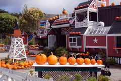 Azienda agricola della zucca prima di Halloween Immagini Stock Libere da Diritti