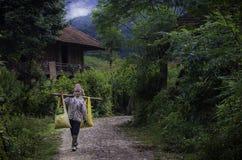 Azienda agricola delle donne Fotografie Stock Libere da Diritti