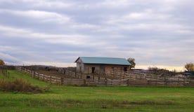 Azienda agricola dello struzzo nel villaggio Immagini Stock Libere da Diritti