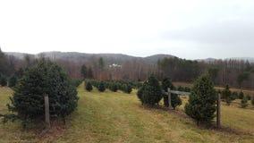 Azienda agricola di albero del Vermont immagini stock