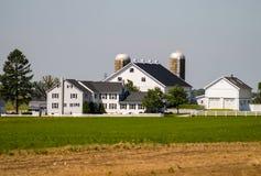 Azienda agricola di Amish con il recinto bianco fotografia stock libera da diritti