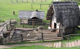 Azienda agricola di animali Fotografia Stock Libera da Diritti