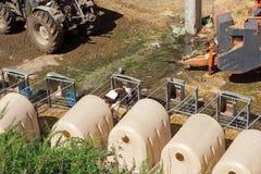 Azienda agricola di bestiame Immagini Stock Libere da Diritti