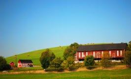 Azienda agricola di bestiame Immagine Stock Libera da Diritti