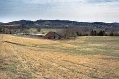 Azienda agricola di bestiame nel Tennessee rurale Fotografia Stock Libera da Diritti
