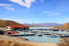 Azienda agricola di color salmone Immagine Stock