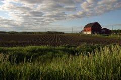 Azienda agricola di estate Immagini Stock Libere da Diritti