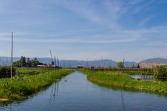 Azienda agricola di galleggiamento, lago del inle nel Myanmar (Burmar) Immagini Stock