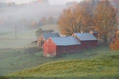 Azienda agricola di Jenne nell'alba Fotografie Stock Libere da Diritti