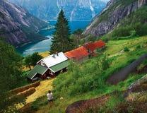Azienda agricola di Kjeasen in Norvegia Immagini Stock Libere da Diritti