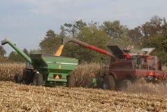 Azienda agricola di lavoro in autunno in anticipo Fotografia Stock