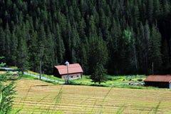 Azienda agricola di lavoro della montagna di Absaroka Fotografia Stock