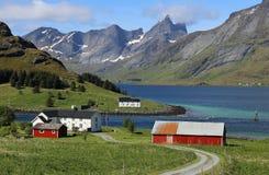 Azienda agricola di Lofoten con il fiordo e montagne nel fondo Fotografia Stock