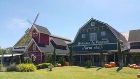 Azienda agricola di Pansook Immagine Stock Libera da Diritti
