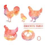 Azienda agricola di pollo in acquerello Fotografie Stock