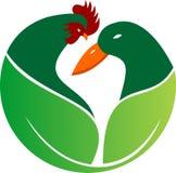 Azienda agricola di riserva della natura dell'anatra del gallo di logo Fotografie Stock Libere da Diritti