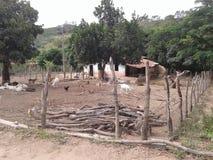 Azienda agricola di Sitio Fotografia Stock