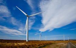 Azienda agricola di vento Immagine Stock
