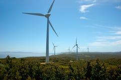 Azienda agricola di vento Immagini Stock Libere da Diritti