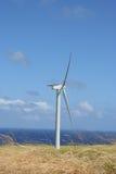 Azienda agricola di vento dell'Hawai Immagine Stock Libera da Diritti