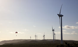 Azienda agricola di vento di Albany Immagini Stock