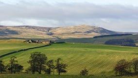 Azienda agricola a distanza di Northumbrian Immagine Stock