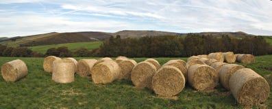Azienda agricola in distretto di punta. L'Inghilterra Fotografia Stock