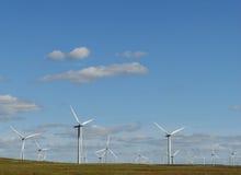 Azienda agricola e cielo blu di vento Immagini Stock