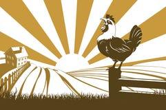 Azienda agricola e gallo Fotografie Stock Libere da Diritti