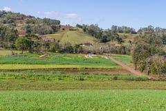 Azienda agricola e montagna Fotografie Stock