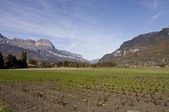 Azienda agricola e prato in alpi svizzere Immagine Stock Libera da Diritti