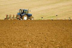Azienda agricola ed agricoltura Fotografia Stock