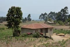 Azienda agricola ed agricoltura in Tanzania fotografia stock