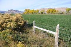 Azienda agricola irrigata del deserto dell'Utah Fotografie Stock