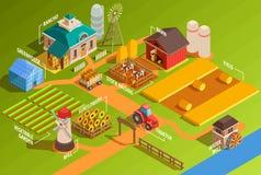 Azienda agricola isometrica Infographics illustrazione vettoriale