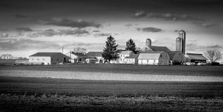 Azienda agricola lunga di Amish fotografia stock