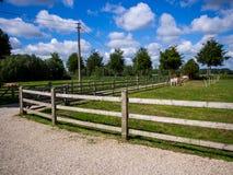 Azienda agricola nel Belgio Fotografia Stock Libera da Diritti