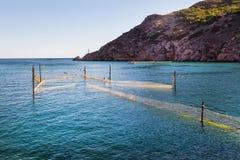 azienda agricola nel mare, cozze dell'acqua fotografia stock libera da diritti