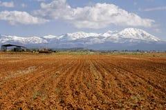 Azienda agricola nell'Utah fotografie stock