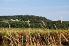 Azienda agricola in Nuova Scozia, Canada immagine stock libera da diritti