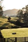Azienda agricola in Nuova Zelanda Immagini Stock Libere da Diritti