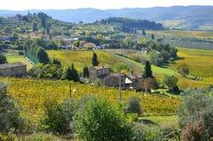 Azienda agricola organica in Toscana, Italia Fotografia Stock