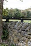 Azienda agricola posta asciutta di Along Historic Horse del recinto della roccia - luccio di Parigi, Kentucky centrale Fotografia Stock