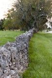 Azienda agricola posta asciutta di Along Historic Horse del recinto della roccia - luccio di Parigi, Kentucky centrale Immagine Stock