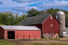 Azienda agricola rurale del cavallo Immagini Stock Libere da Diritti